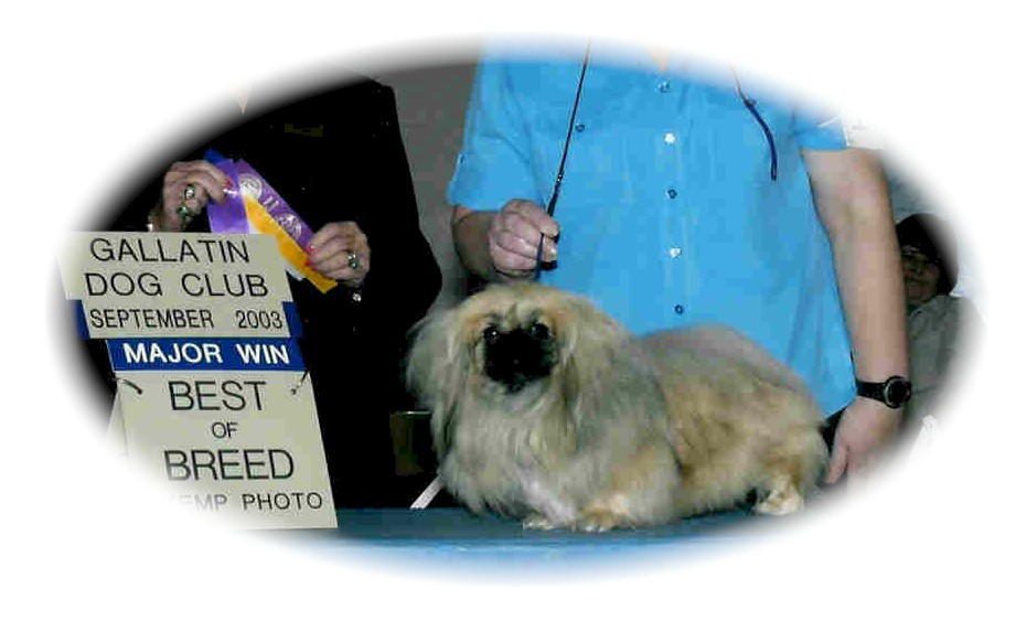 Kismet Best Of Breed